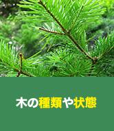 木の種類や状態