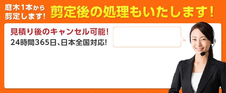 剪定1本から剪定します!剪定後の処理もいたします!見積もり後のキャンセル可能!24時間365日、日本全対応!