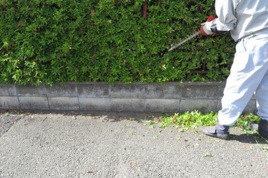 生垣の剪定方法