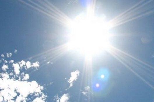 【1】日光に当てる
